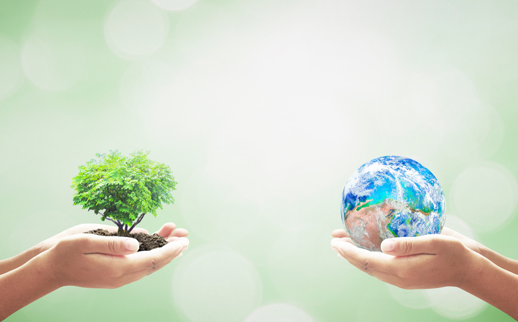 Why are Sustainable Stocks Outperforming Markets