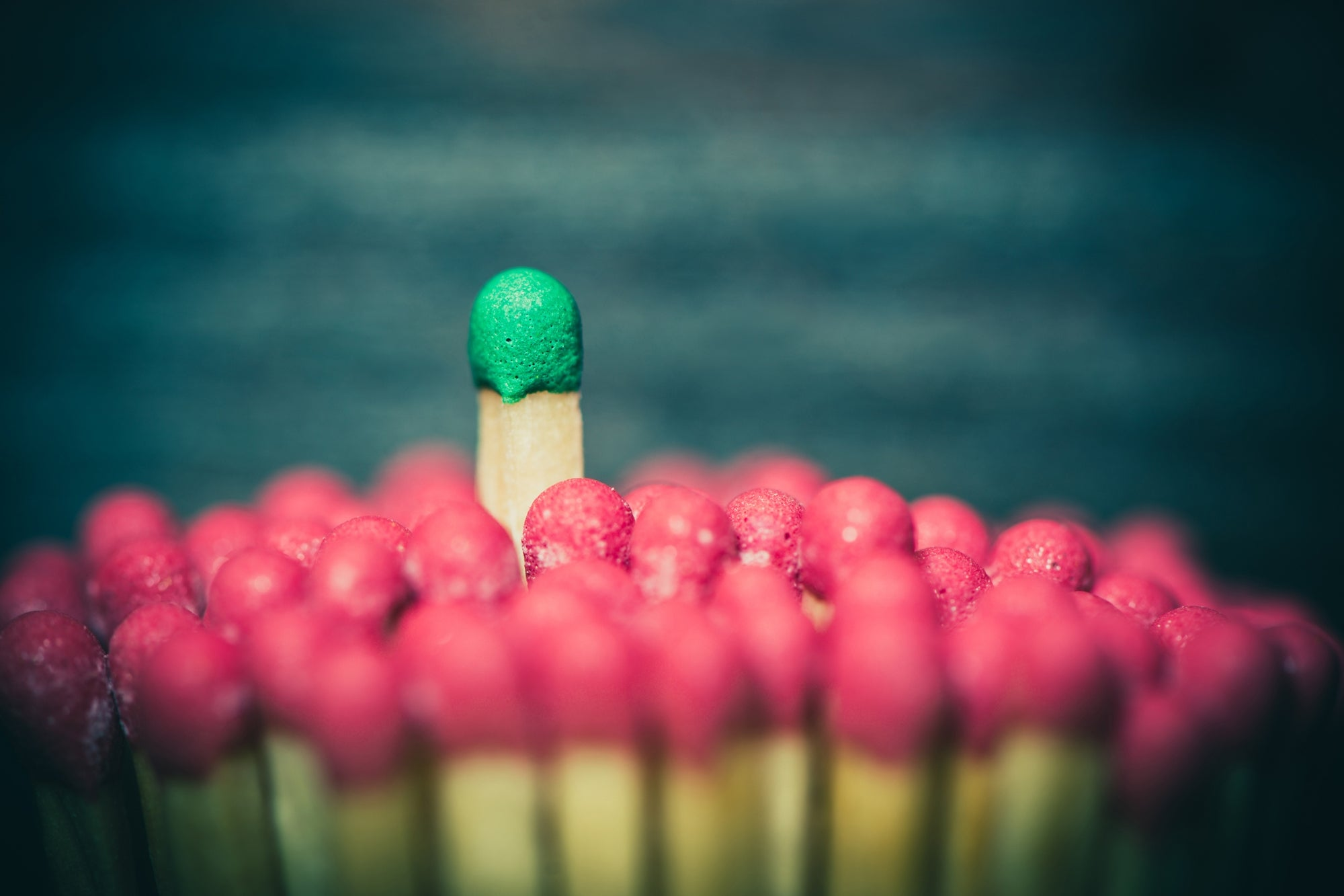 Make Your Brand Stand Out From the Crowd with Smart Digital Marketing Strategies